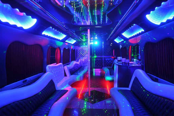 18 person party bus rental   buffalo
