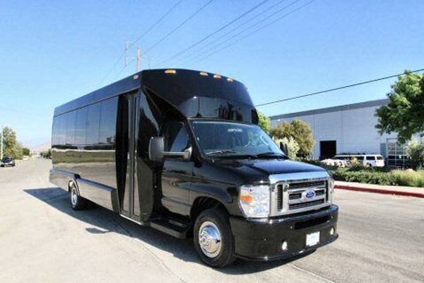 20 passenger party bus   buffalo